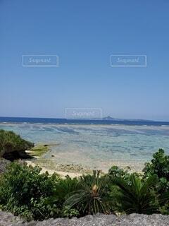 綺麗な海の写真・画像素材[4529505]