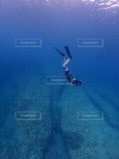 海の中の写真・画像素材[4529567]