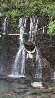 自然,屋外,緑,水,水面,水辺,池,滝,樹木,岩,癒し,パワースポット,箱根,涼しげ,マイナスイオン,草木,鯉,滝の音