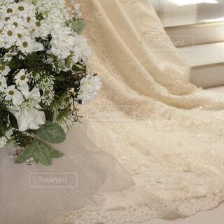 花のクローズアップの写真・画像素材[4544795]