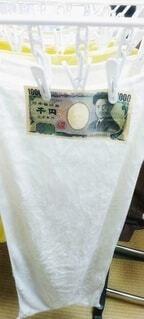 洗濯ばさみで干してある千円札の写真・画像素材[4628437]