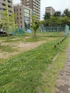 近所の平和大通り in 広島の写真・画像素材[4545739]