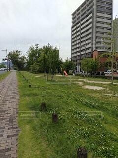 ご近所の平和大通り in 広島の写真・画像素材[4545738]