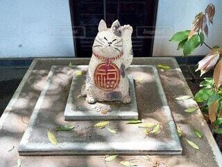 猫,動物,影,光,キラキラ,座る,置物,木陰,神奈川,関東,招き猫,お賽銭,蕎麦屋,動画,動く,ムービー