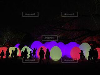光タマゴの写真・画像素材[4555863]