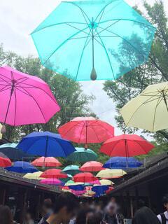 たくさんのカラフルな傘の写真・画像素材[4563892]