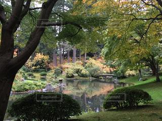 公園 - No.250904