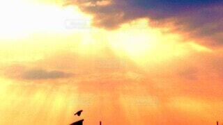 夕日に飛ぶ飛行機の写真・画像素材[4620359]