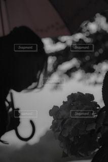 花の黒と白の写真の写真・画像素材[816609]