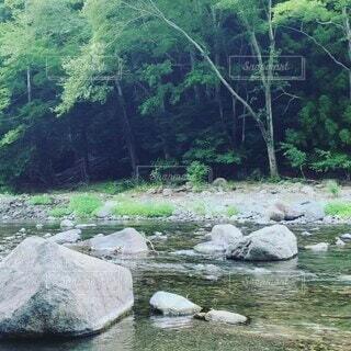 自然,屋外,湖,川,水面,山,滝,樹木,岩,運河,草木