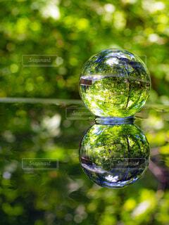 水鏡アート🎨✨の写真・画像素材[4568139]