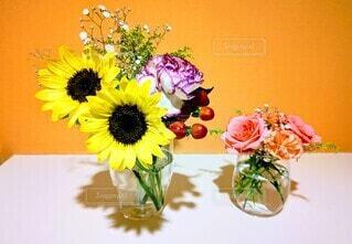 玄関の花の写真・画像素材[4647602]