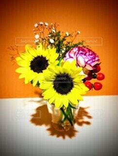 玄関の向日葵の写真・画像素材[4662308]