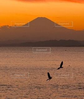 富士山と夕焼けの写真・画像素材[4872534]