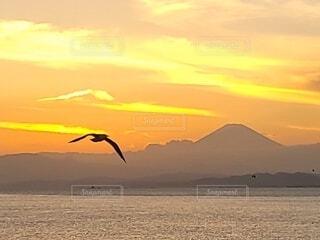 夕焼けと富士山の写真・画像素材[4872546]