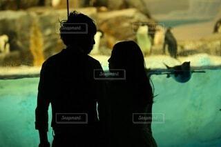 水族館でデートを楽しむカップルの写真・画像素材[4714492]
