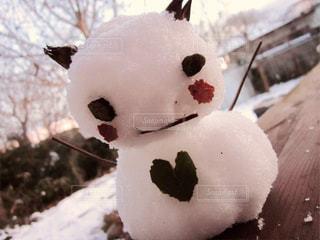 冬の写真・画像素材[205732]