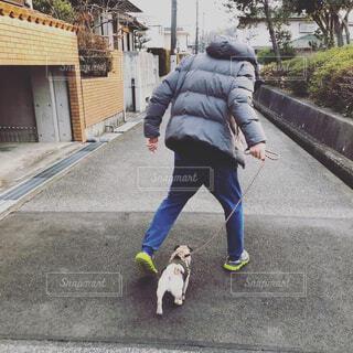 犬の散歩をしている人の後ろ姿の写真・画像素材[4617897]