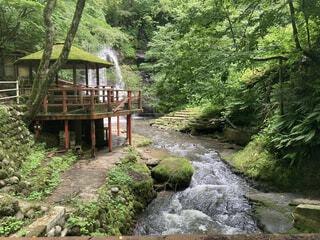 山の中にある滝と苔と川の写真・画像素材[4609172]