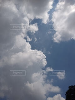 空,屋外,雲,青,飛ぶ,昼間,くもり