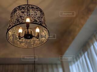 天井に映る影が素敵なボタニカル柄のペンダントライト①の写真・画像素材[4609348]