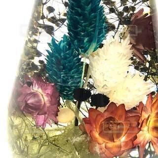多色使いのハーバリウムの写真・画像素材[4613129]