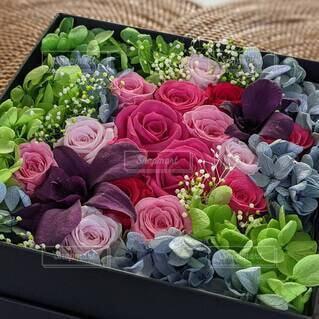 バラとデンファレのボックスフラワーアレンジメント。の写真・画像素材[4619814]