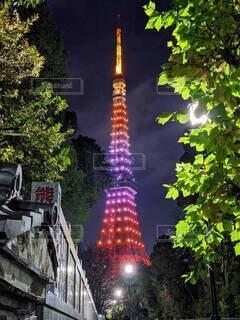 赤くライトアップされた夜の東京タワーの写真・画像素材[4620986]