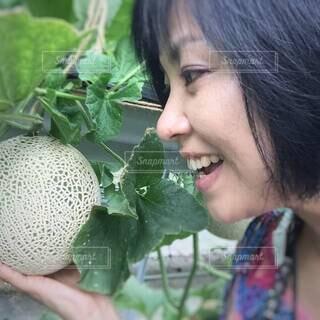 収穫前の美味しそうなメロンを見つめる女性の笑顔の写真・画像素材[4637047]