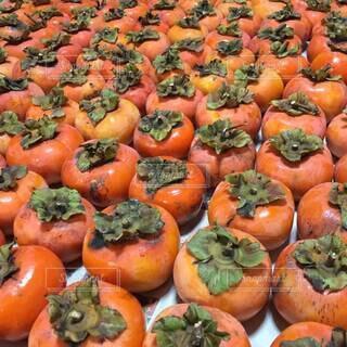 整列したたくさんの柿。寄りの写真・画像素材[4813532]