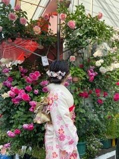 花のような可愛らしい人になりたいの写真・画像素材[4712212]