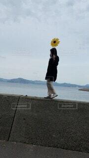 女性,20代,海,春,夏,髪,ワンピース,ひまわり,白,青空,島,黒,黄色,風車,黒髪,向日葵,人,風,そよ風