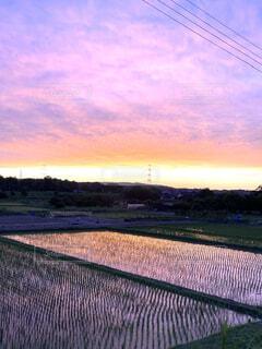 風景,空,屋外,雲,夕暮れ,田んぼ