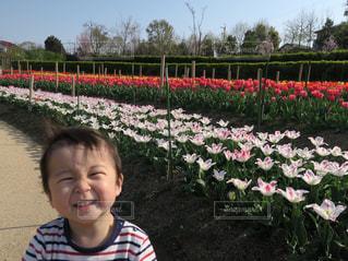 子ども,1人,公園,芝生,散歩,男の子,チューリップ満開