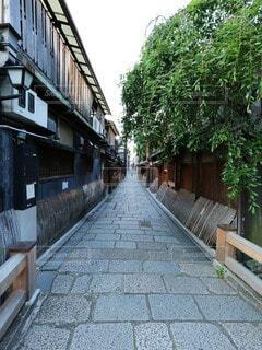 祇園切通しの風景の写真・画像素材[4610561]