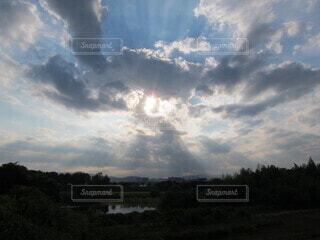 自然,空,屋外,太陽,雲,樹木,光芒,早朝,くもり,桂川