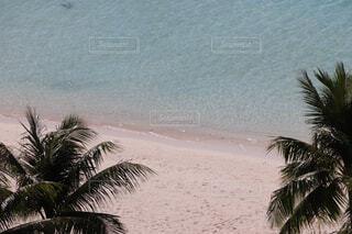 グアムのビーチの写真・画像素材[4617696]