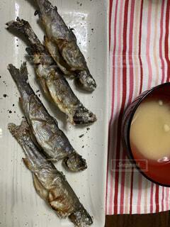 食べ物,動物,魚,貝,和食,魚介類,塩焼き,川魚,魚製品