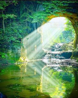 まるでジブリの世界観⁈ 〜これを見るまでは死ねない、千葉県の絶景〜の写真・画像素材[4617792]