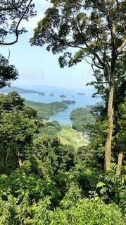 自然,風景,空,屋外,湖,島,水面,山,草,樹木,草木
