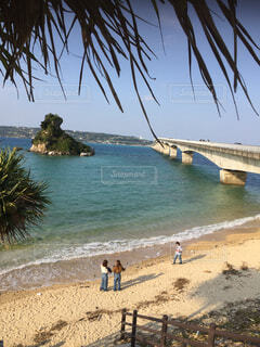 自然,風景,海,空,屋外,ビーチ,島,水面,海岸,樹木,ヤシの木