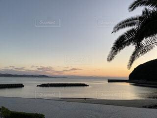 自然,風景,海,空,屋外,ビーチ,雲,夕暮れ,水面,ヤシの木,高知
