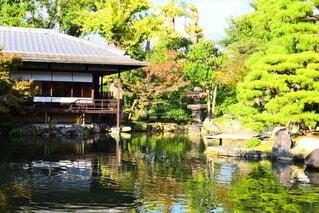 自然,秋,屋外,湖,水面,池,反射,家,樹木,草木,ガーデン