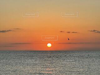 自然,海,空,夕日,鳥,屋外,太陽,赤,夕暮れ,水面,オレンジ,橙