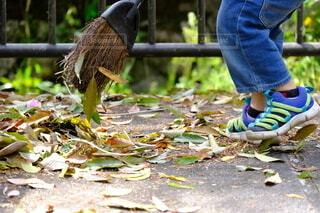 足元,子供,落ち葉,外,風,掃除,ホウキ