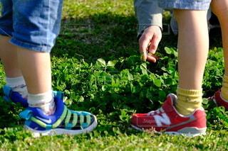 靴,屋外,サンダル,ジーンズ,草,人物,若い,草木,ガーデン,履物