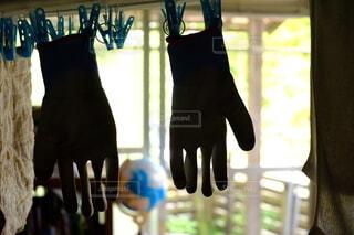 雨上がりの逆光で写る手袋の写真・画像素材[4643803]