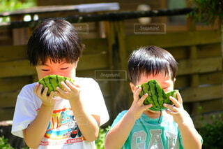 スイカを食べている兄弟の写真・画像素材[4754127]