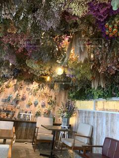 カフェ,花,ドライフラワー,装飾,綺麗な景色