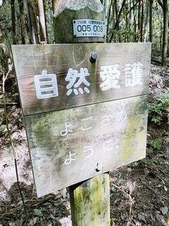自然,屋外,看板,山,標識,登山,山登り,守る